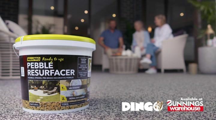 Dingo Cement