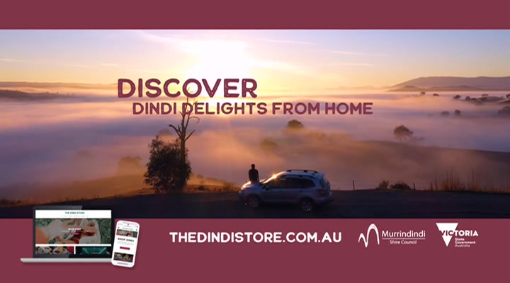 The Dindi Store