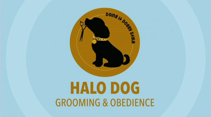 Halo Dog Grooming & Obedience