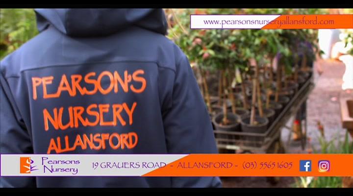 Pearsons Nursery