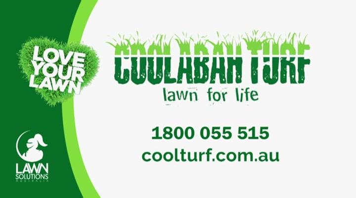 Coolabah Turf