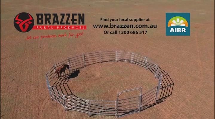 Brazzen Rural Store