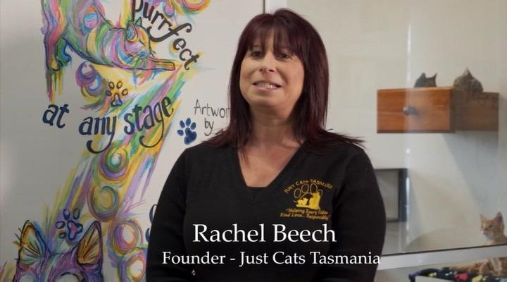 Just Cats Tasmania