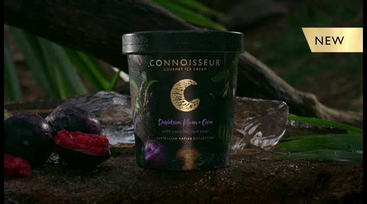 Connoisseur Gourmet Ice Cream