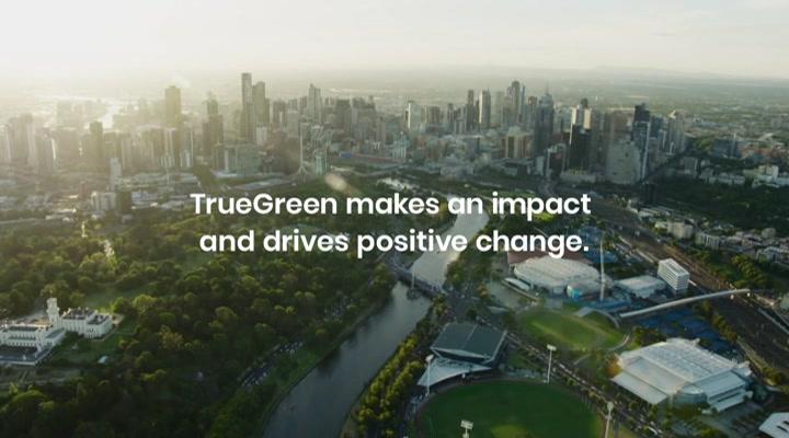 True Green Group