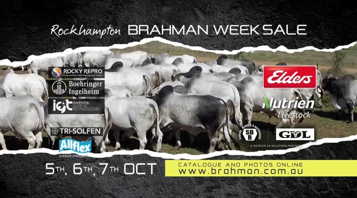 Australian Brahman Breeders' Association Limited (