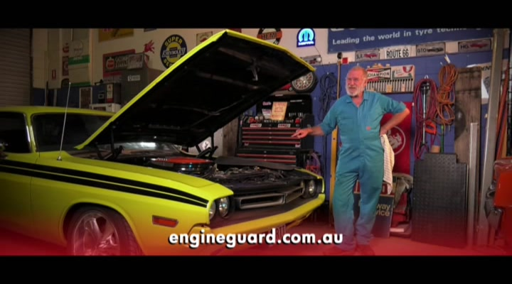 Engine Guard