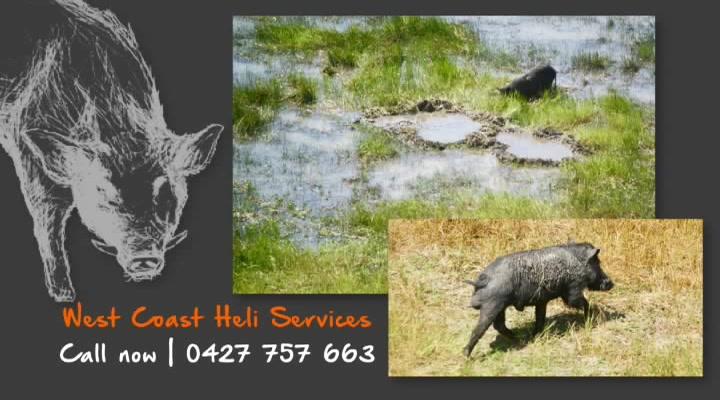 West Coast Heli Services