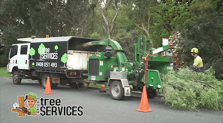 Carter's Tree Services